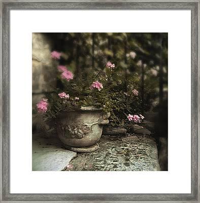 Garden Planter Framed Print