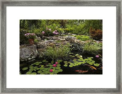 Garden Pond - D001133 Framed Print