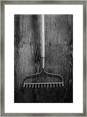Garden Rake Up Framed Print by YoPedro