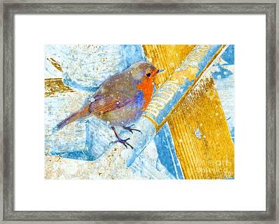 Framed Print featuring the photograph Garden Robin by LemonArt Photography