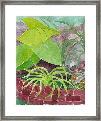 Garden Scene 9-21-10 Framed Print by Fred Jinkins