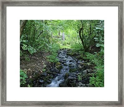 Framed Print featuring the photograph Garden Springs Creek In Spokane by Ben Upham III