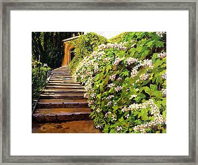 Garden Stairway Tuscany Framed Print by David Lloyd Glover