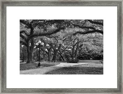 Garden Stroll II Framed Print by Jon Glaser