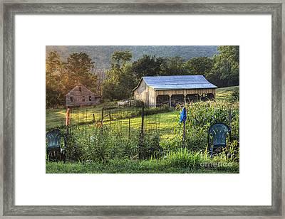 Garden View Framed Print
