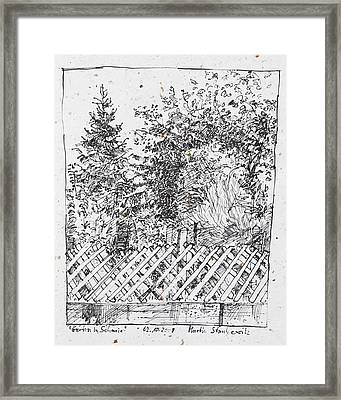 Garden,fence And Trees Framed Print
