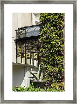 Gardening Delights - Wisteria Aloe Vera And A Stained Glass Canopy - Left Framed Print by Georgia Mizuleva