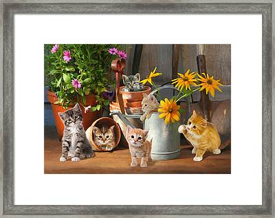 Gardening Kittens Framed Print by Bob Nolin