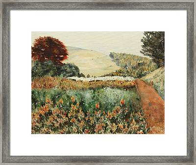 Gardens At Monticello Framed Print