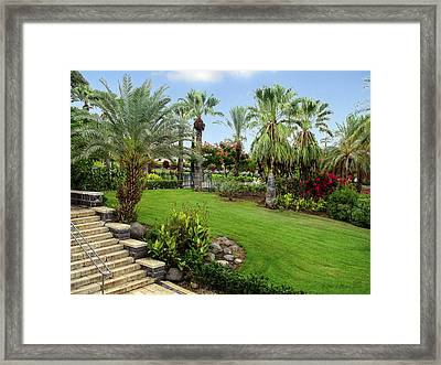 Gardens At Mount Of Beatitudes Israel Framed Print by Brian Tada