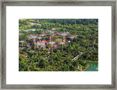 Gardens By The Bay Framed Print by David Gn