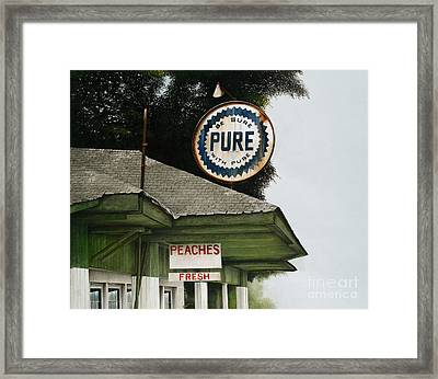 Gardner's Peaches Framed Print by Mike England
