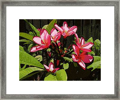 Gardren Joy Framed Print