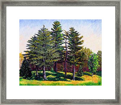 Garfield Trees Framed Print by Stan Hamilton