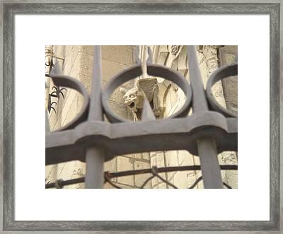 Gargoyle On Notre Dame Framed Print by John Julio