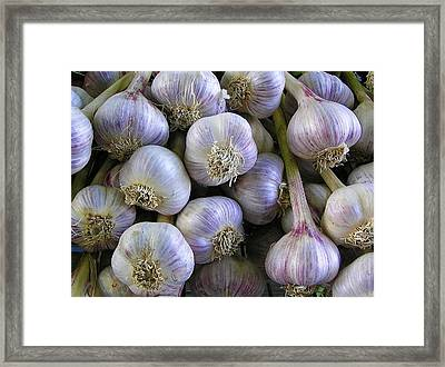 Garlic Bulbs Framed Print by Jen White
