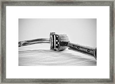 Garlic Press Framed Print by Anton Tsvetkov