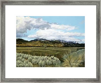 Garner Valley Meadow Framed Print