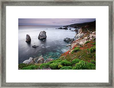 Garrapata Shore Framed Print by Eric Foltz