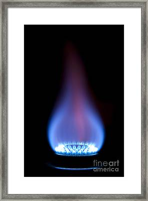 Gas Flame Framed Print by Andy Smy