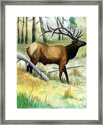 Gash Flats Bull Framed Print