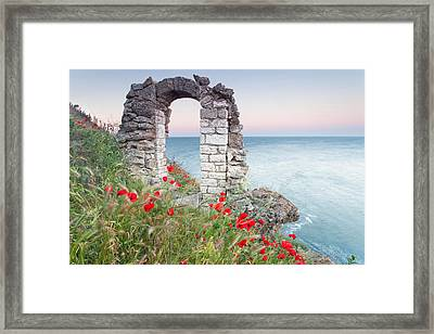 Gate In The Poppies Framed Print by Evgeni Dinev