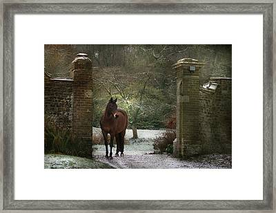 Gate To Another World Framed Print by Dorota Kudyba