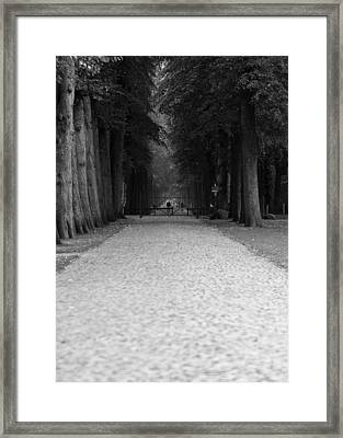Gated Path Framed Print by Edward Myers