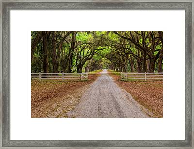 Gated Plantation Framed Print by Jon Glaser