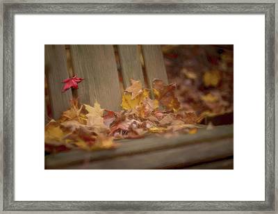 Gathered Leaves Framed Print by Andrea Kappler