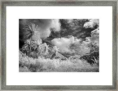 Gathered Today Framed Print