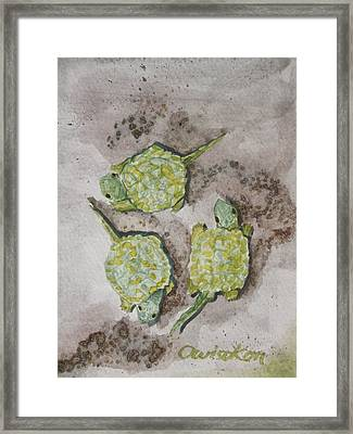 Gathering The Clan Framed Print by Owisokon Lahache