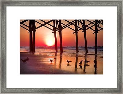 Gathering The Morning Light Framed Print by Karen Wiles