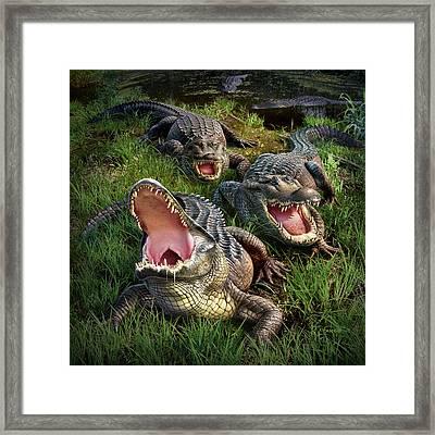 Gator Aid Framed Print