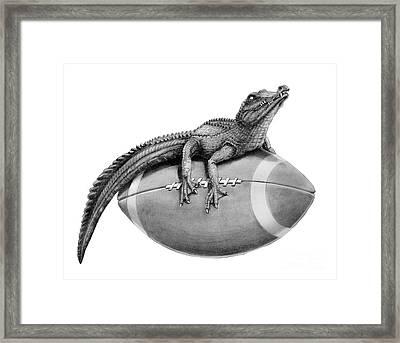 Gator Football Framed Print by Murphy Elliott
