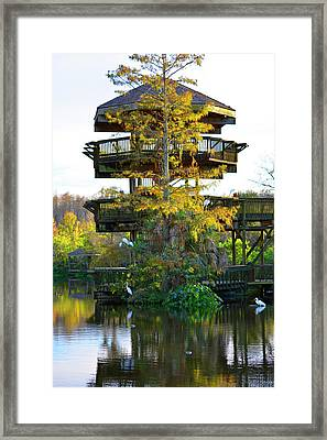 Gator Tower Framed Print
