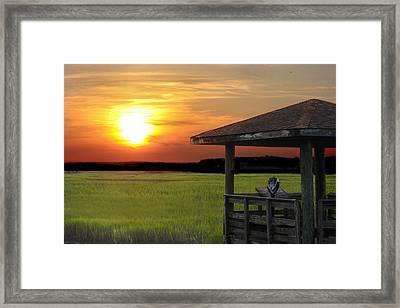 Gazebo On The Marsh Framed Print by Terry Shoemaker