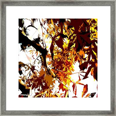 Gazing Into The Autumn Trees Framed Print by Patrick J Murphy
