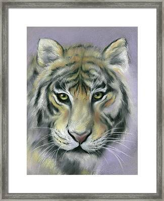 Gazing Tiger Framed Print