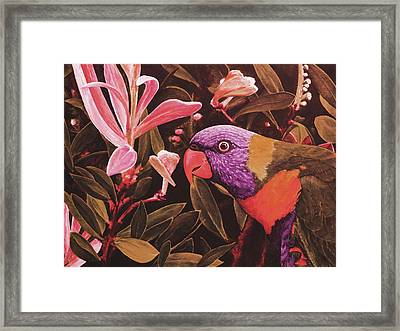 G'day Mate - Crimson Framed Print by Julie Turner