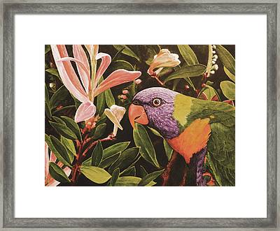G'day Mate - Desert Framed Print by Julie Turner