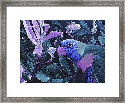 G'day Mate - Midnight Framed Print by Julie Turner