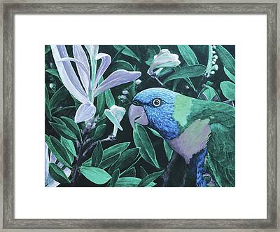 G'day Mate - Ocean Framed Print by Julie Turner