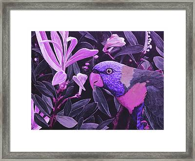 G'day Mate - Violet Framed Print by Julie Turner