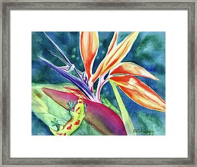 Gecko On Bird Of Paradise Framed Print