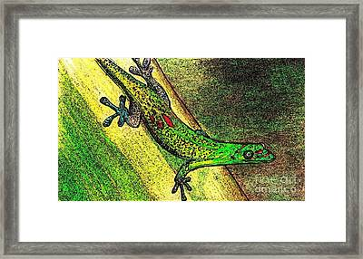 Gecko On The Green Framed Print