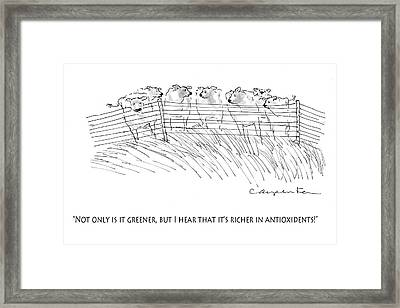 Greener Grass Framed Print