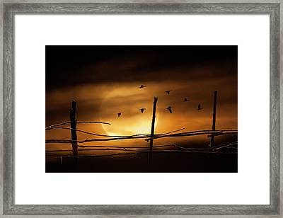 Geese Against A Harvest Moon Framed Print by Randall Nyhof