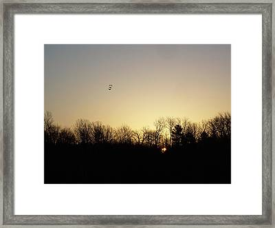 Framed Print featuring the photograph Geese At Sunrise by Kent Lorentzen