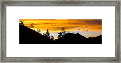 Framed Print featuring the photograph Geese At Sunrise by Shane Bechler